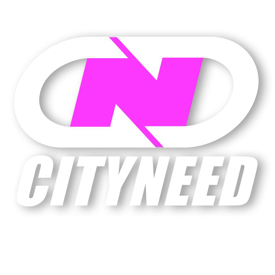 logo-city-need
